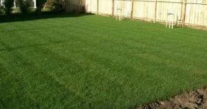 Fresh roll on Lawn , Compost , Yard clearing