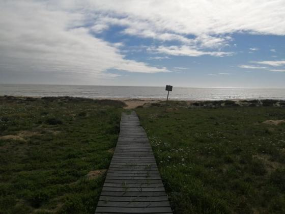 Brand new house 200m from the sea for sale in Langebaan, Western Cape