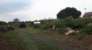 Vacant Land / Plot 6000m2 FOR SALE in Eveleigh