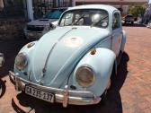 Beetle 1962