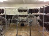 Biltong and Droewors drying racks