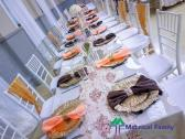 Party and Events decor services