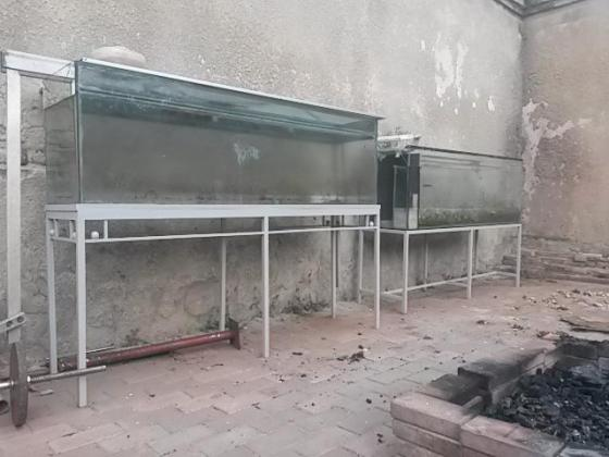 fish/reptile tanks for sale R1000 for both in Bedfordview, Gauteng