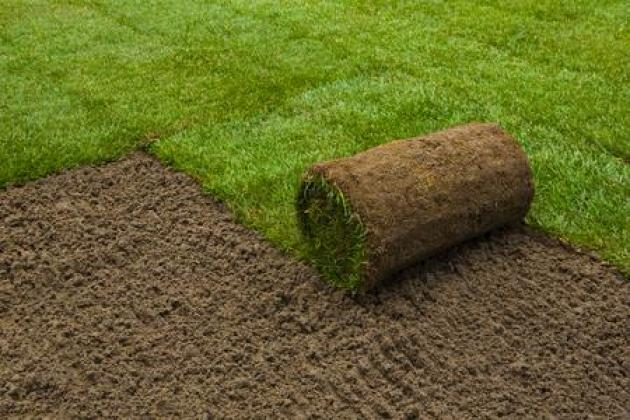 INSTANT LAWN SUPPLY  AND TOPSOIL in Benoni, Gauteng