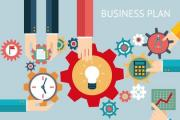 Affordable Professional Business Plans