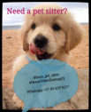 House and pet sitter in Cape Town