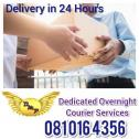DMP Overnight Courier Services