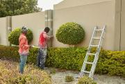 Professional painters for your home renovations