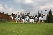 Mamelodi Pitbulls Softball