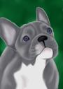 High Quality Digital Pet Portraits