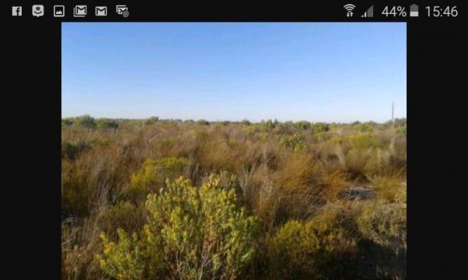 Farmland Hopefield western cape in Hopefield, Western Cape