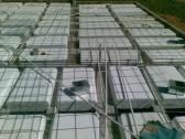 JD Concrete Slabs and Stairs