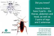Best Pest Control Services in Midrand