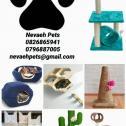 Pet furniture / scratch posts / accessories / beds
