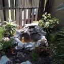 Waterfalls ,Koi ponds  Garden revamps and Designs