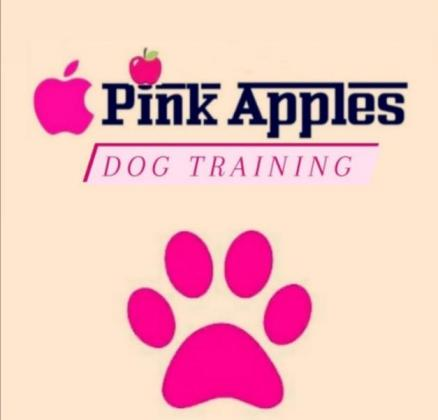 Dog training in Johannesburg, Gauteng
