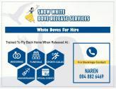 SNOW WHITE DOVE RELEASE SERVICES