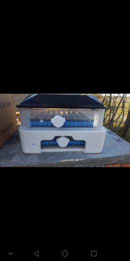 Egg incubator in Malmesbury, Western Cape