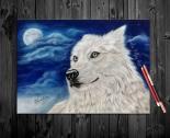 White Alaskan Wolf Lucan