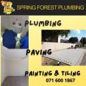 Spring Forest Plumbing (Pty) Ltd